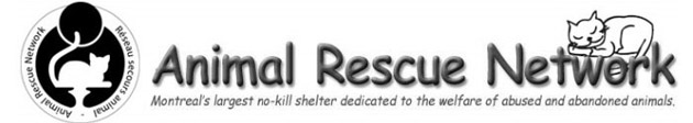 animal rescue network